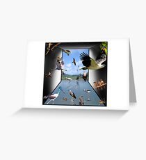 Birds - Yes! Greeting Card