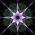 Plaid Mandala  by Barbara A Lane