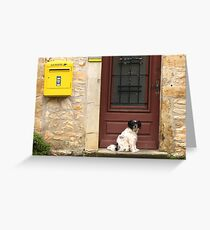 Waiting Patiently Greeting Card