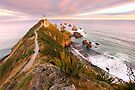 Fading Light, Nugget Point, South Island, New Zealand by Michael Boniwell