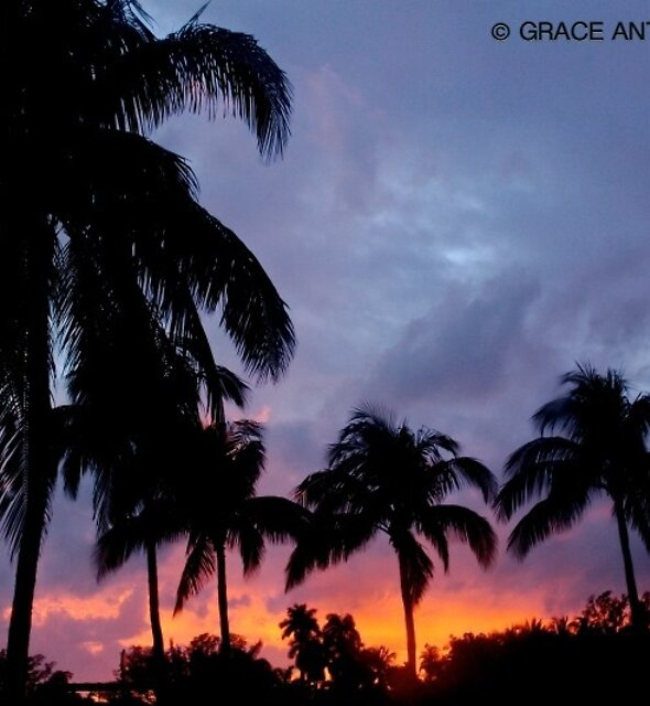 Miami Beach Sunset by GraceNotes