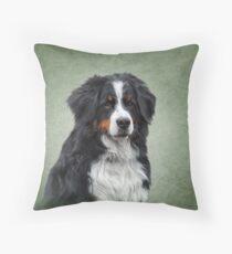 Berner Sennenhund. Zeichnung, lustiger Hund der Illustration Sitzkissen