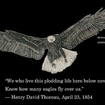 Eagle and Thoreau quote by BillDrew