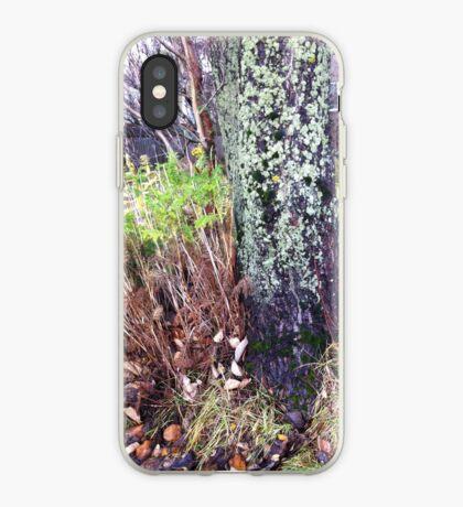 Late autumn iPhone Case