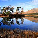 Loch  Tulla  Inveroran   Argyll by Alexander Mcrobbie-Munro