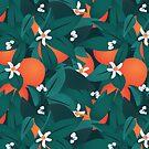 Orangenblüten von gingerish