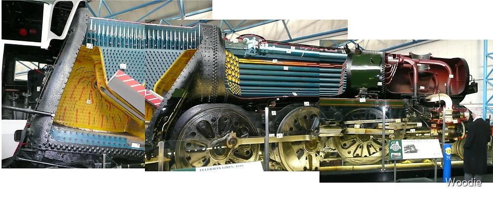 Cut Away Steam Engine (Photos x3) by Woodie