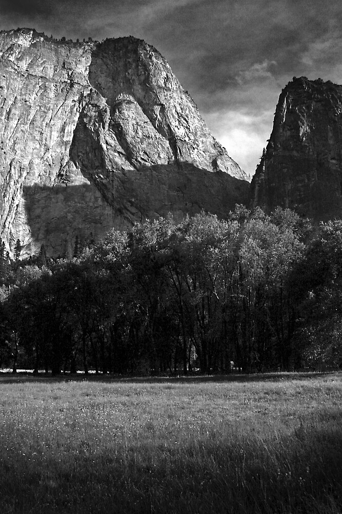 Yosemite National Park  by Tyler  Core