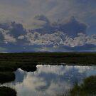 Isle  of  Lewis  blue  puddle by Alexander Mcrobbie-Munro