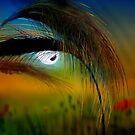 Colors Of Summer II by Igor Zenin