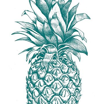 Pineapple by mickaelcorreia