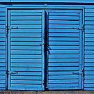 Blue Doors by Harlan Mayor
