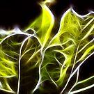 Green leaves Fractalius . by Jon Baxter