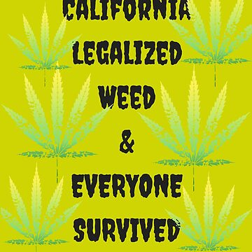 California Legalized Weed and Everyone Survived by Erinelizacotter
