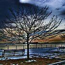 Good-bye Winter by LudaNayvelt