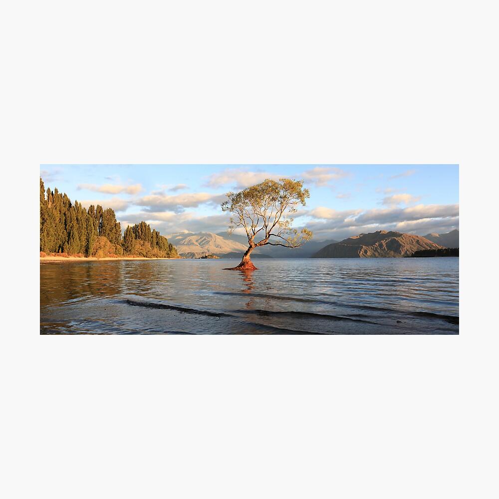 Lake Wanaka, South Island, New Zealand Photographic Print