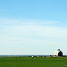 White Barn by Cindy RN