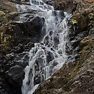 Sour Milk Gill Seathwaite by mikebov