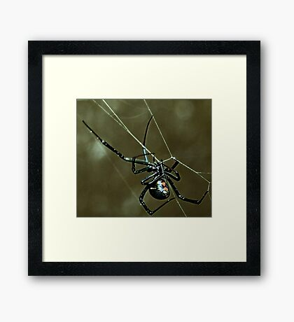 Green Haze  ( Black Widow Series ) Framed Print