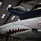 TomCat and Canuck by Bob Moore