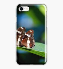 Butterflies on a leaf A iPhone Case/Skin