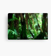 Camp Firefly Canvas Print