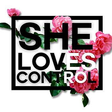 She Loves Control by FAKINGNOT