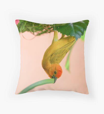 Golden Palm Weaver 2 Throw Pillow