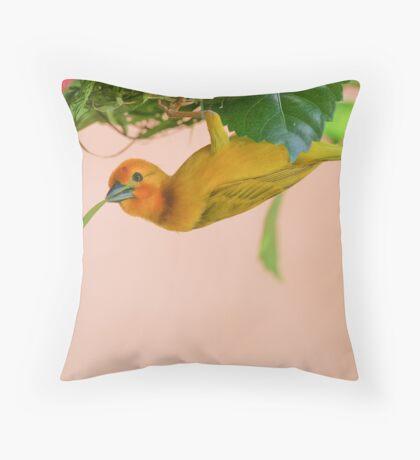 Golden Palm Weaver 3 Throw Pillow