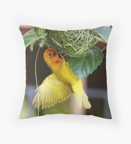 Golden Palm Weaver 5 Throw Pillow