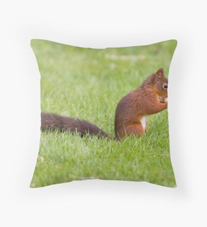 Red Squirrel 1 Throw Pillow