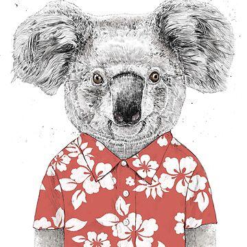 Summer koala by soltib