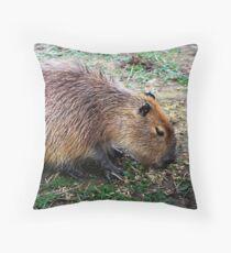Capybara Floor Pillow