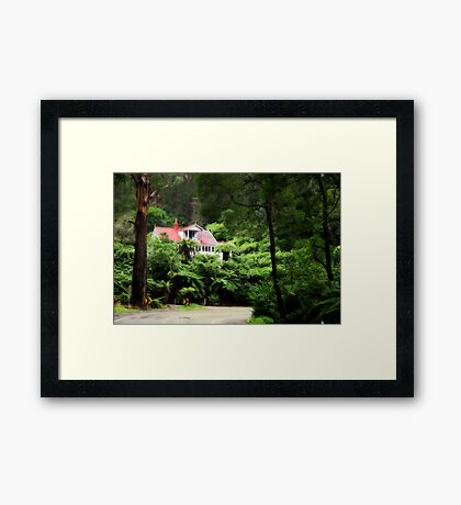 Fern House Framed Print