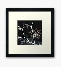 Night Whispers. Dark Floral Framed Print