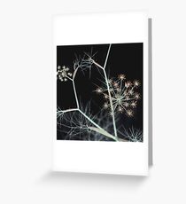 Night Whispers/Dark Floral Greeting Card