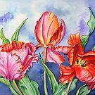 Parrot Tulips 2 by Lynne Henderson