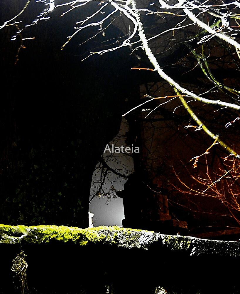THE EN TRANCE by Alateia