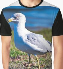 Seagull Portrait Graphic T-Shirt