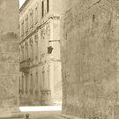 Mdina Streets by Rosalie M