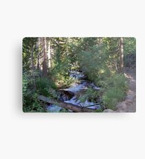 calvin and hobbes forest Metal Print