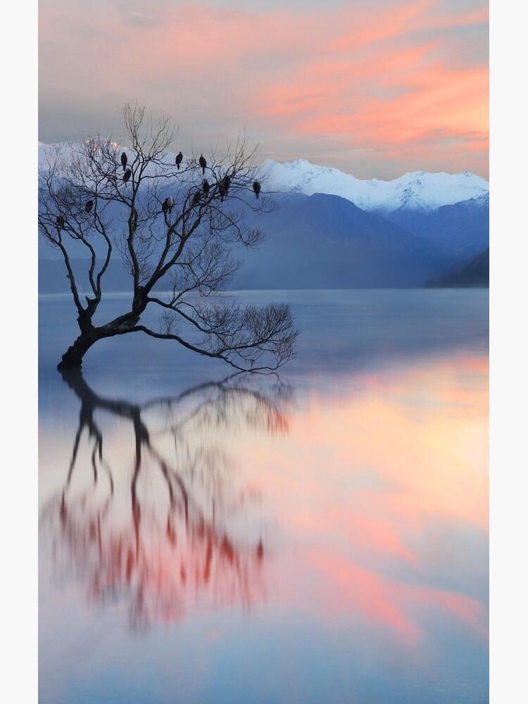 Pink Sky at Lake Wanaka by PeterH
