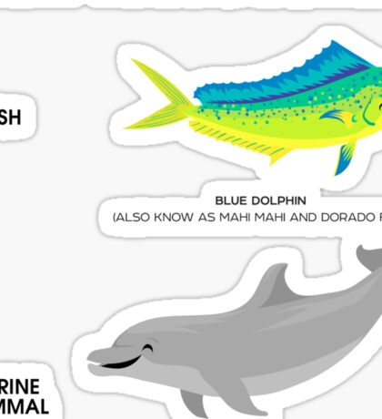 Image of Know Your Dolphins-1