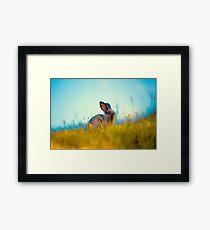 Grass Fed Bunny Framed Print