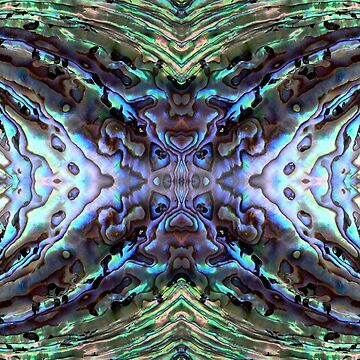 Abalone Abstract by Skaylaki