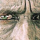 Hypnotic Eyes, Pushkar India, 2008 by Tash  Menon