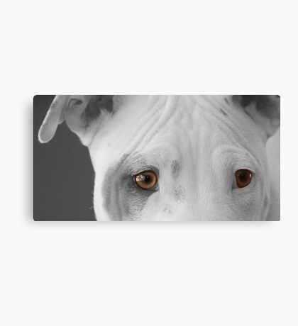 freckles the pit 2 Canvas Print