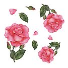 Watercolour Pink Rose Pattern by Farida Greenfield