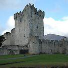 Ross Castle Killarney by pablotguerrero