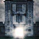 mysterious light by Joana Kruse